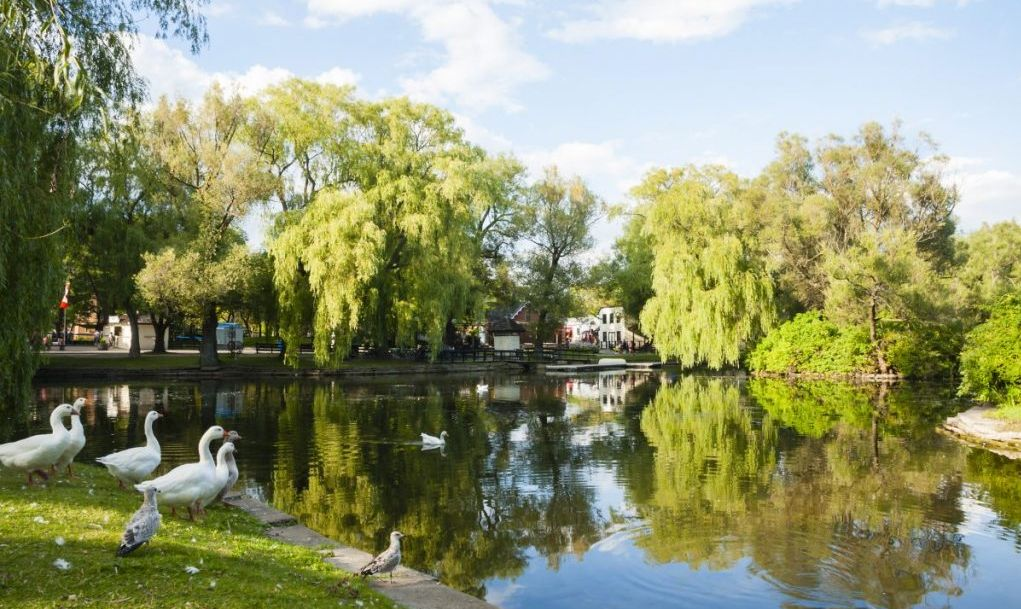 best things to do in Toronto islands