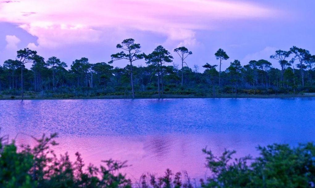 Jolee Island Nature Park