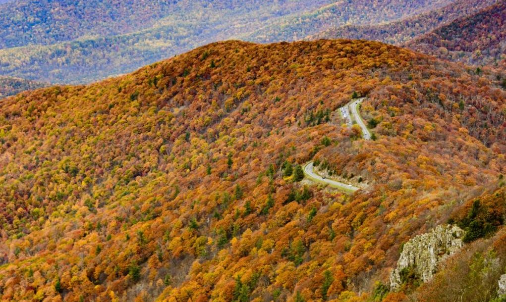 shenandoah Best National Parks in the US