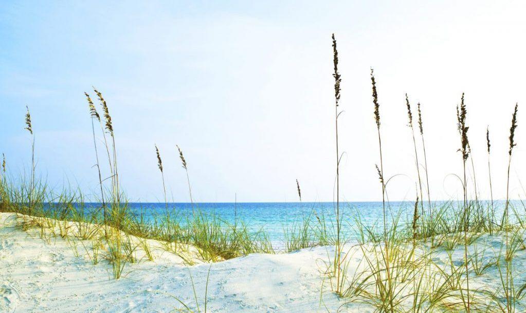 Henderson State Park Florida