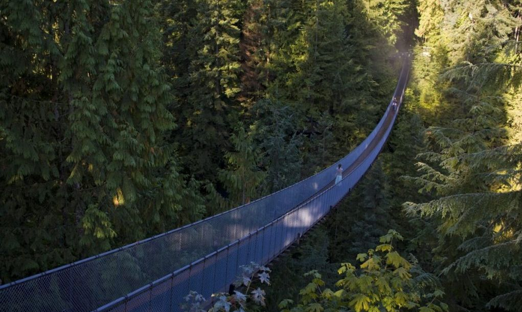 Vancouver capilano suspension brudge