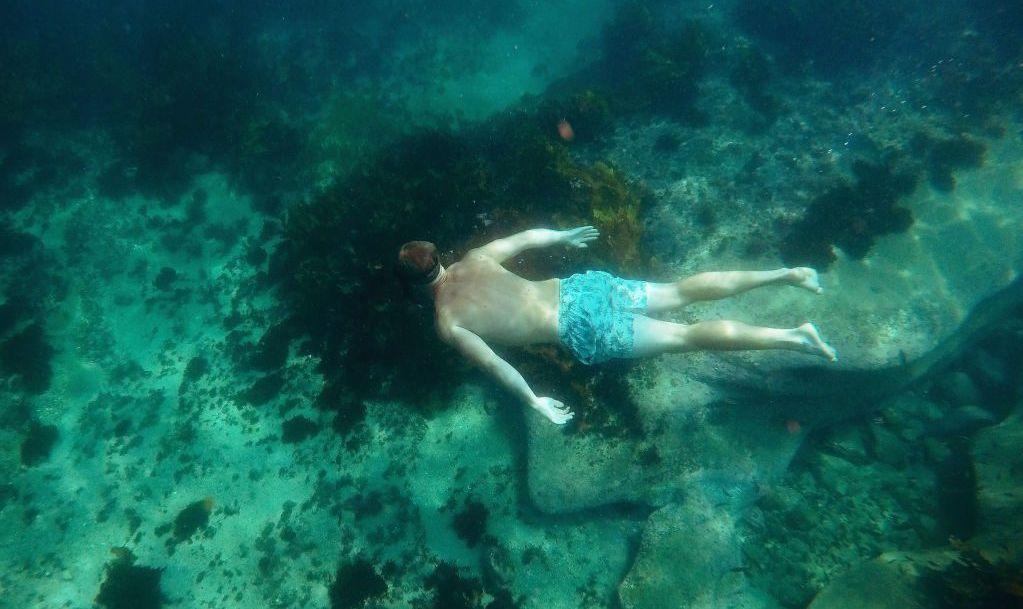 snorkel Playa del Carmen