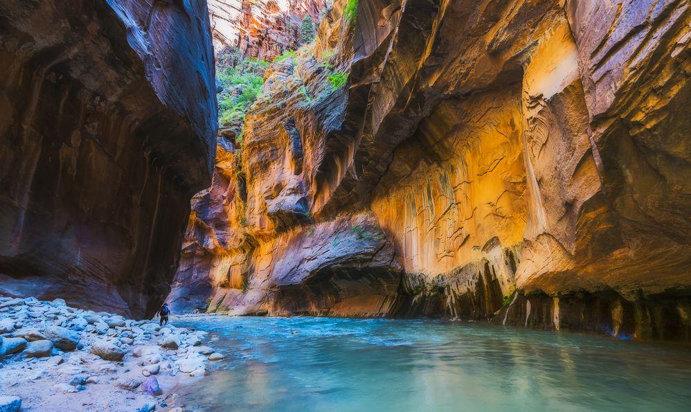trail Zion