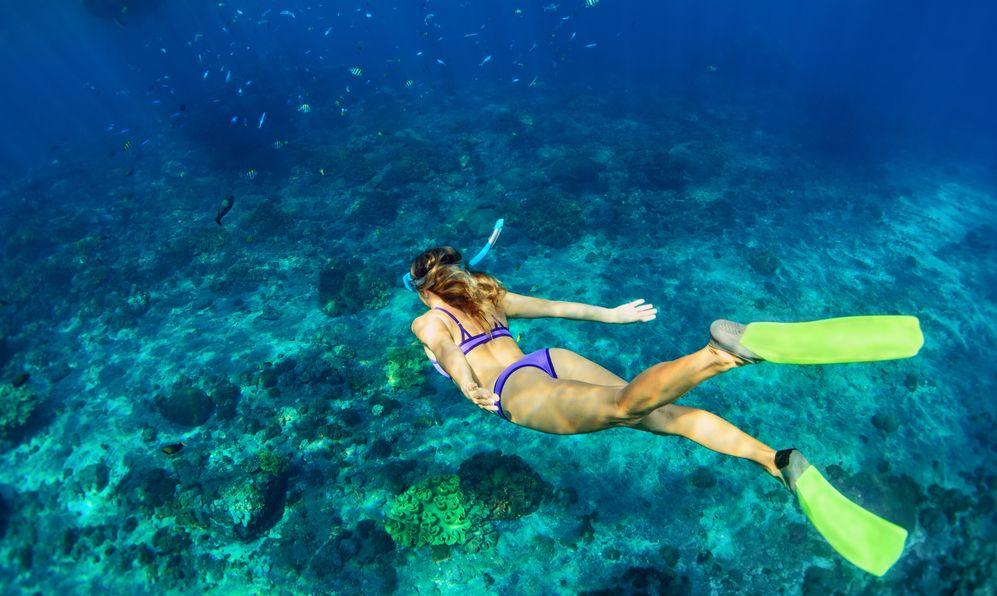 snorkelling Bora Bora