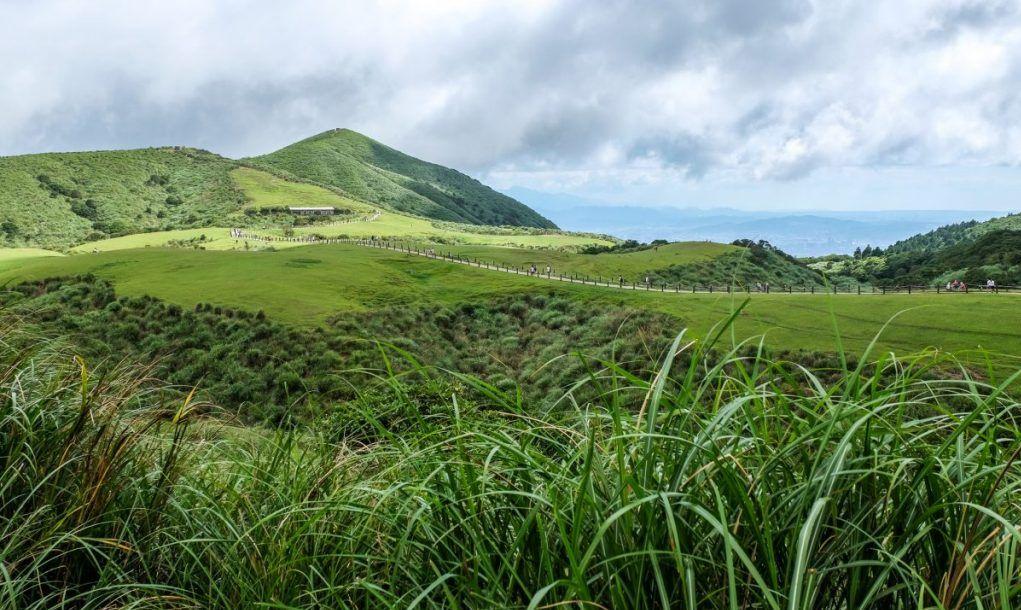 Grasslands of Yangmingshan National Park