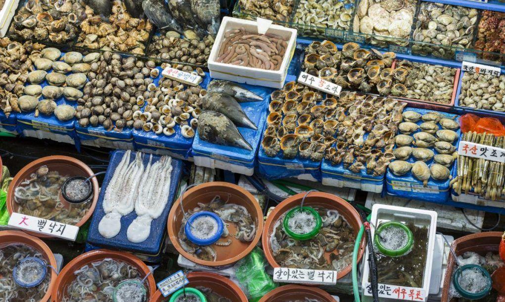 Noryangjin Fisheries Wholesale Market, Seoul
