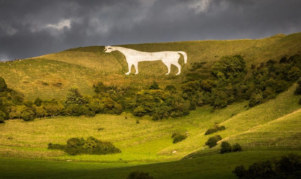 chalk white horse wiltshire