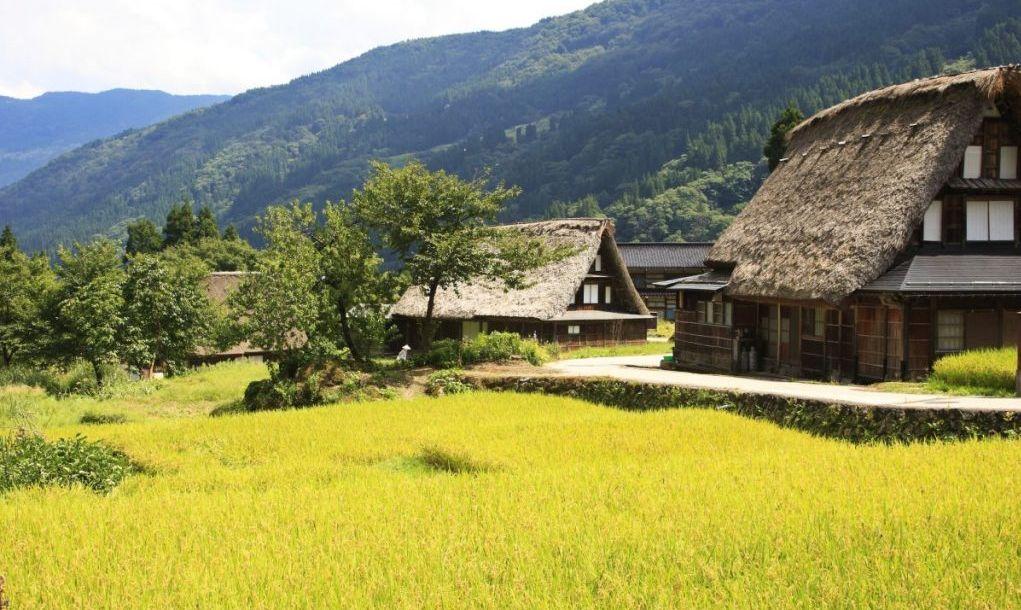 farmhouse toyama history
