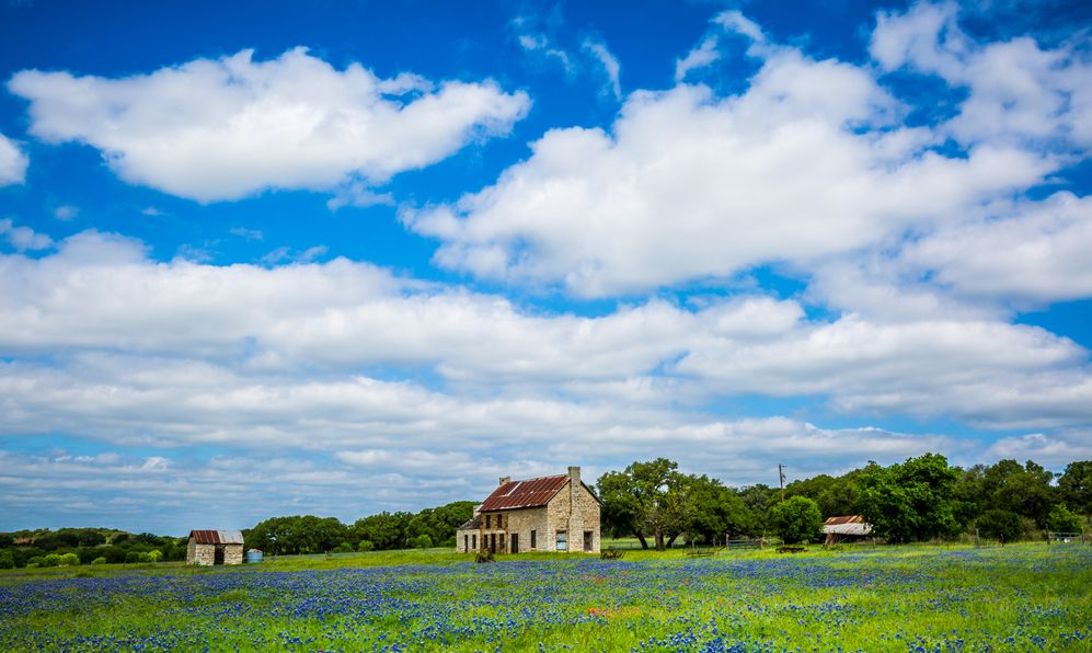 this abandoned two-story limestone house sits in fields of bluebonnets