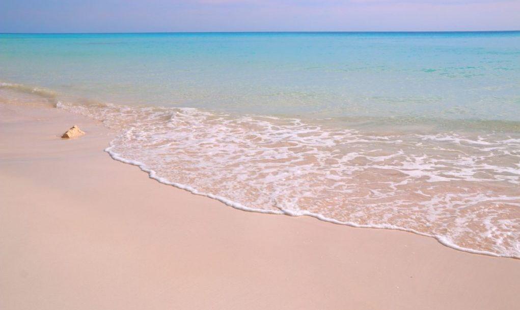 pink beach bermuda