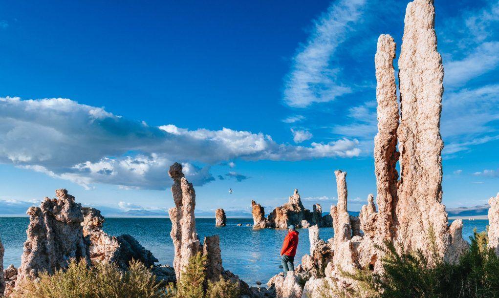Solo Traveller at Mono Lake