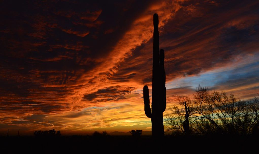 Lost Dutchman State Park, Apache Junction, Arizona, US