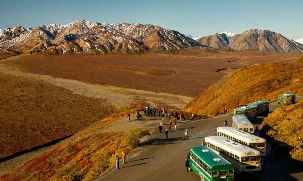 Tour Buses in Denali NP, Alaska, US
