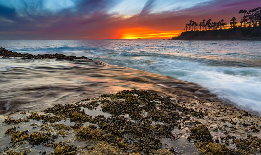 Coastal Landscape Photograph of Orange County