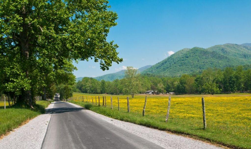 country road through smoky mountains