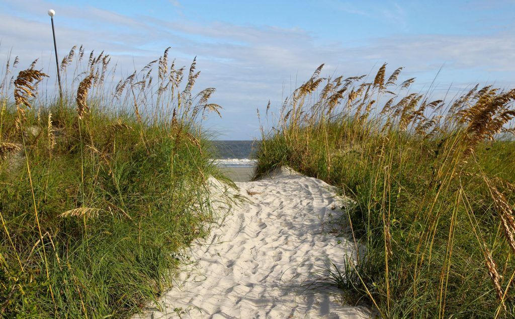 Path to a beach - Sea Pines, Hilton Head Island SC