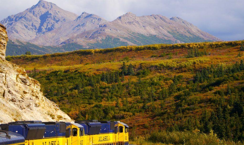 Denali Train