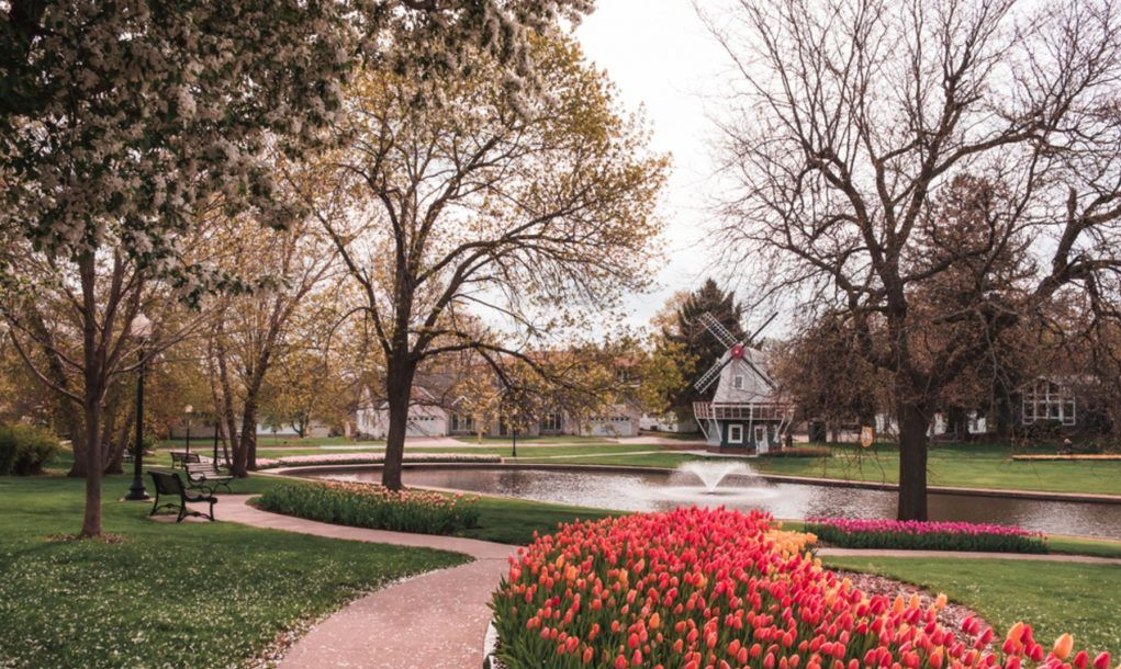 Pathway lined with beds of Tulips in Sunken Gardens Park, Pella, Iowa