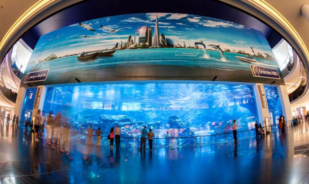 Dubai Aquarium and Under Water Zoo in the shopping mall's interior