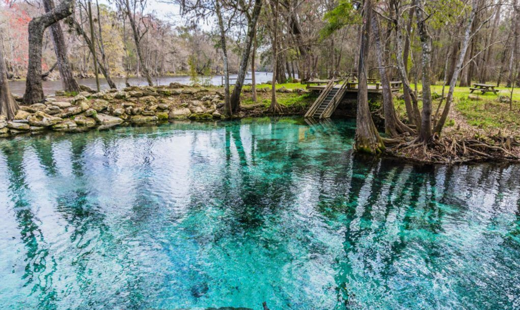 Amazing Florida Springs