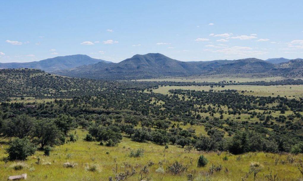 mountains Texas landscapes