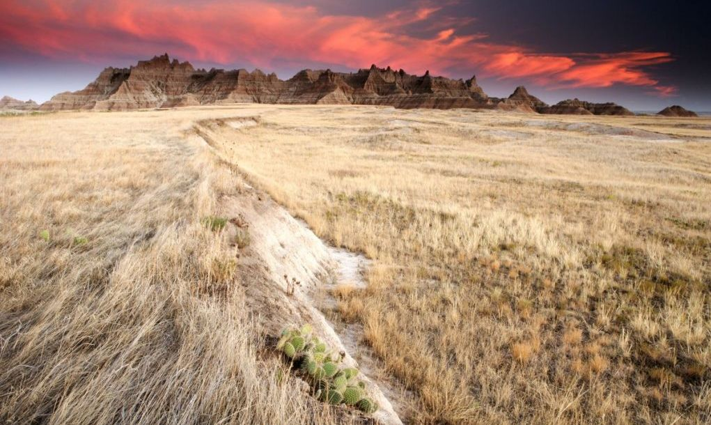 Badlands and Prairie Field at Sunset