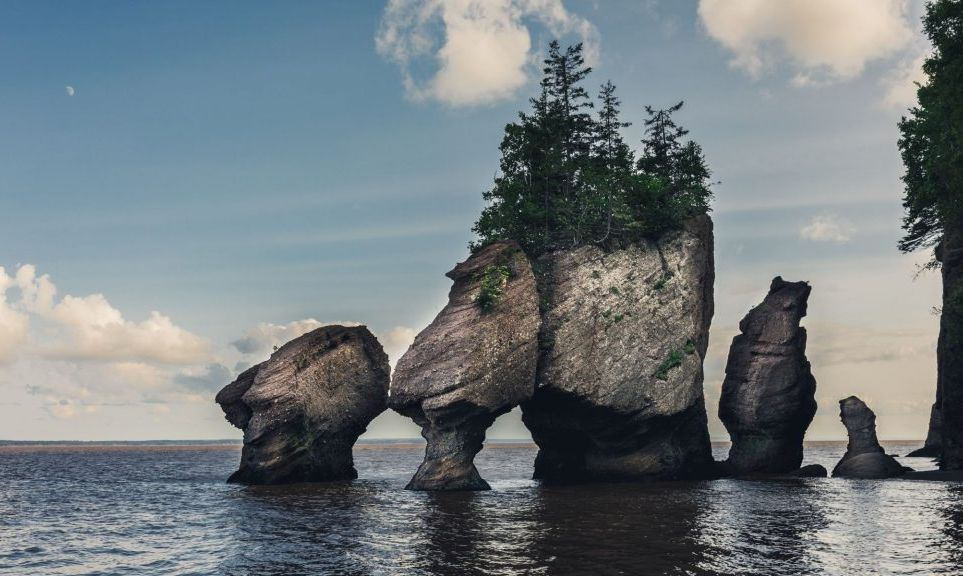 The Bay of Fundy tides are the highest tides in the world, with 160 billion tonnes of seawater gushing in and out of the bay twice a day.
