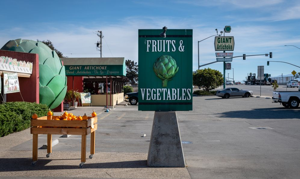 Giant artichoke Fruit and vegetables sign