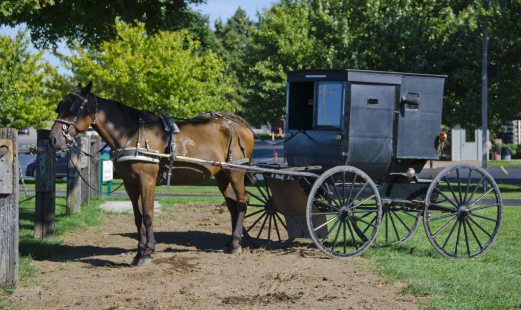 Middlebury Amish Country