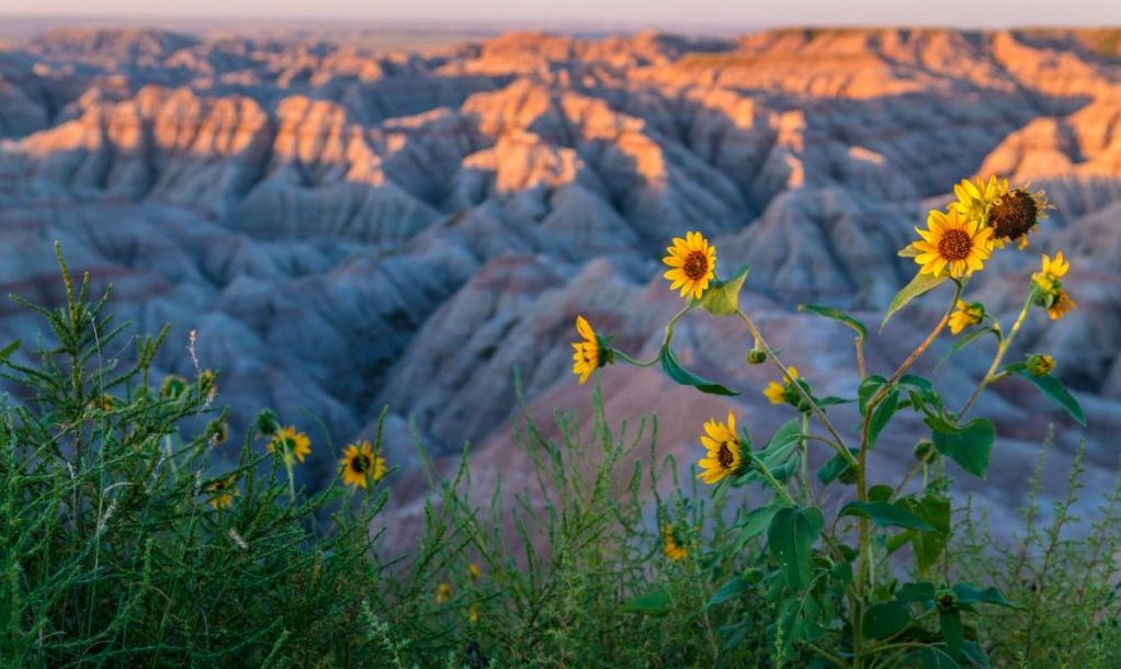Badlands Landscape - National Park South Dakota