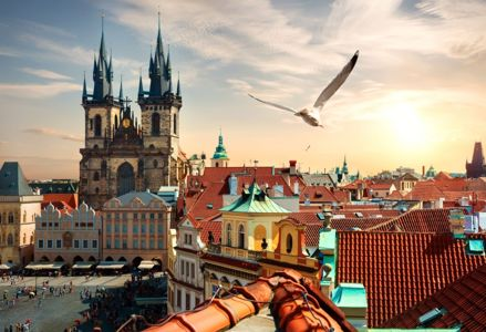 Unique Things to Do in Prague