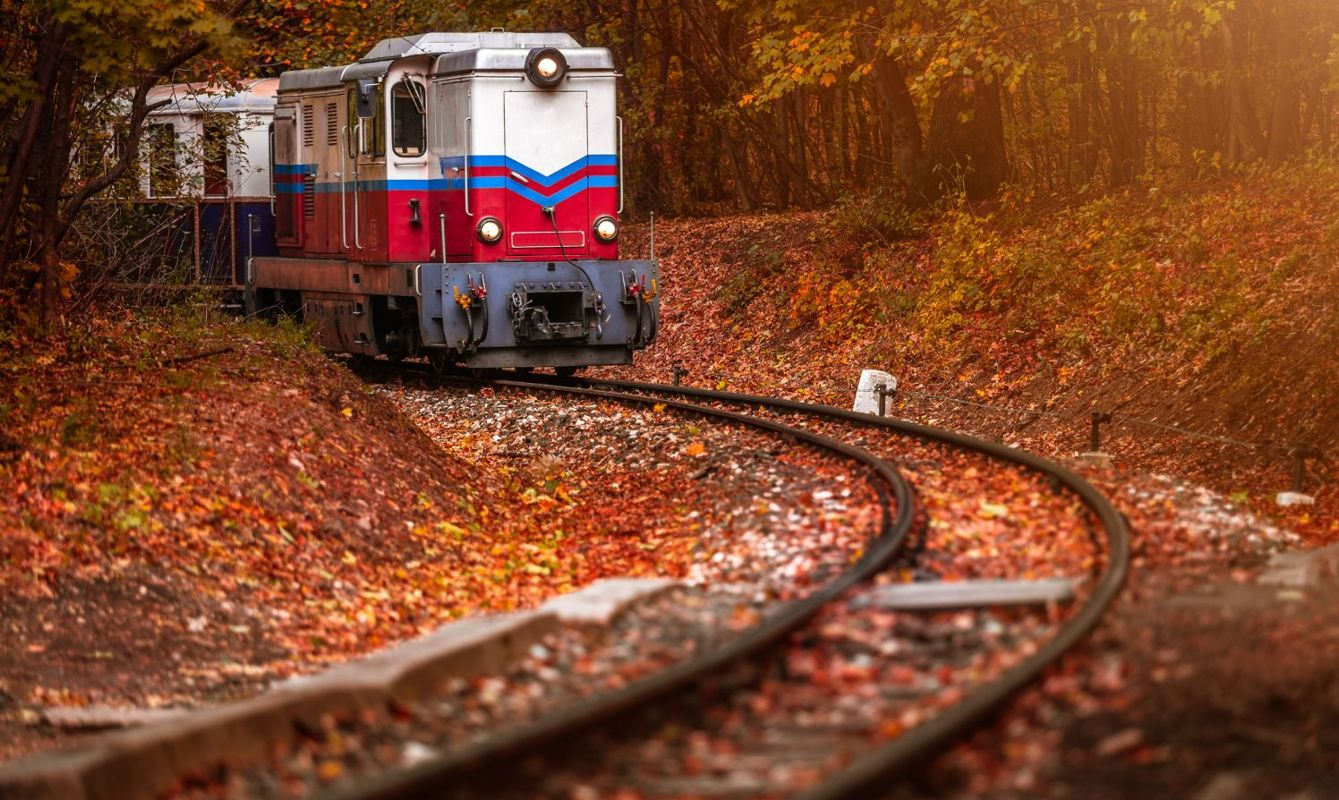 Beautiful autumn forest with foliage and old colorful train on the track in Hungarian woods of Huvosvolgy