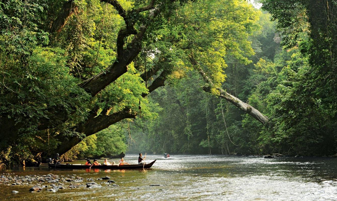 Lata Berkoh (National Park) - Pahang, Malaysia.
