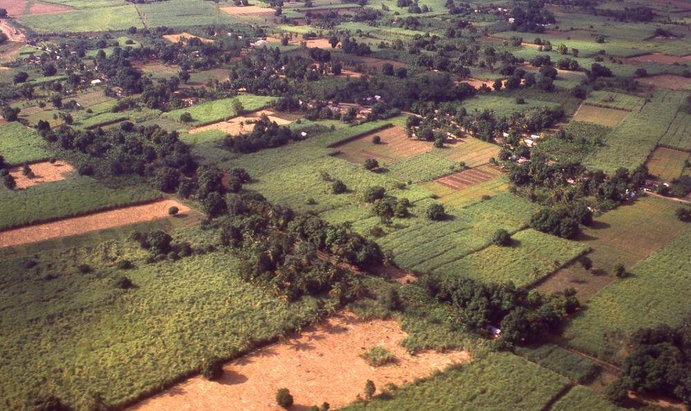 Wynne Farm sustainability haiti