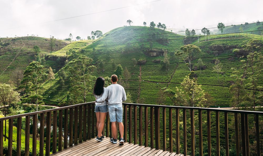 Couple in love at tea plantation. Travel to Sri Lanka. Green tea plantations in the mountains.