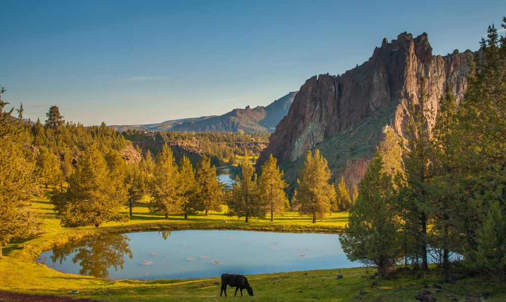 Smith Rocks State Park, a popular rock climbing area in central Oregon