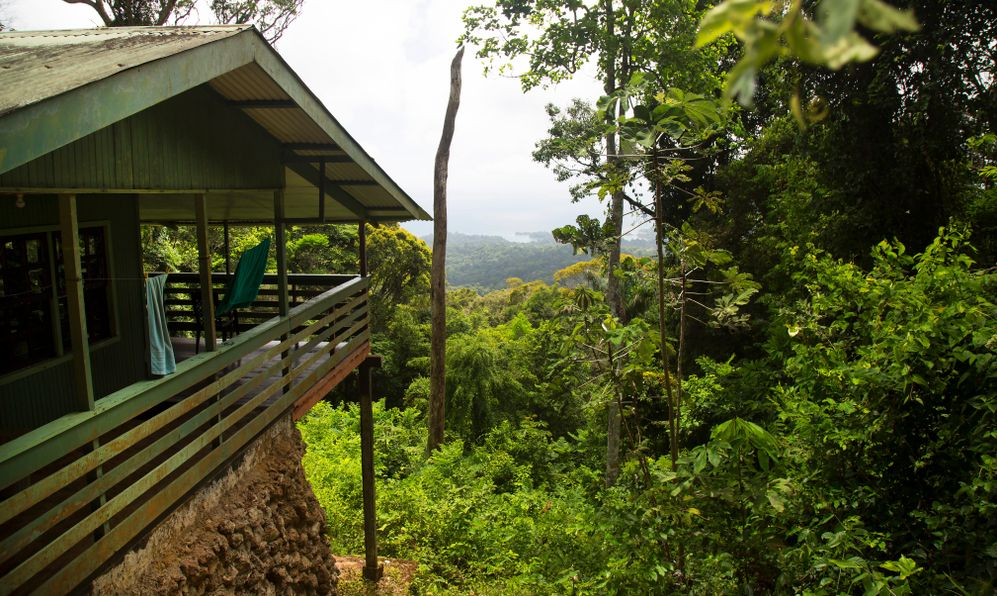 old wooden declining holiday homes on top of the Brownsberg national park rain forest