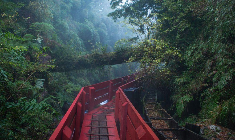 Termas geometricas, parque nacional Villarica Sur. Coñaripe - Chile