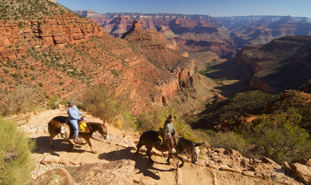 tourists on horseback during an excursion