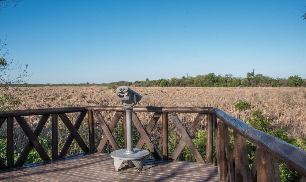 CostaneraSur Ecological Reserve Argentina