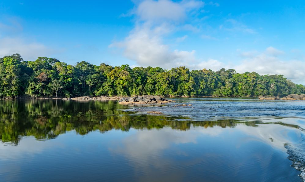 Essequibo river trip Views around Guyana's Interior and rainforest