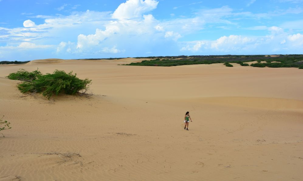 Sand dunes of the Medanos de Coro National Park, Venezuela