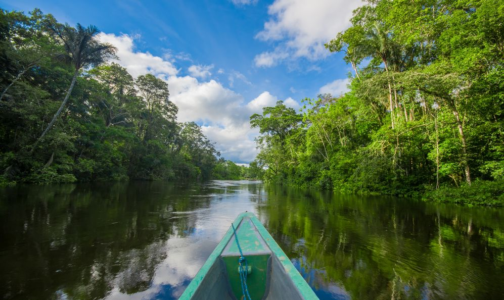 ravelling by boat into the depth of Amazon Jungles in Cuyabeno National Park, Ecuador