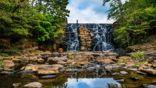 Visit Alabama State Parks