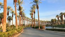 The Best Things to Do in Palm Springs on Your Next Trip