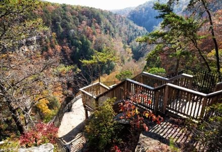 Visit these Georgia State Parks