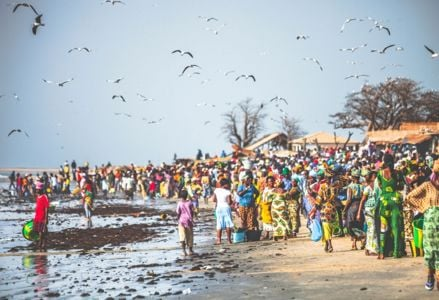 Exciting Things to Do in The Gambia