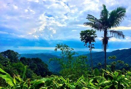 Reasons to Visit Puerto Rico