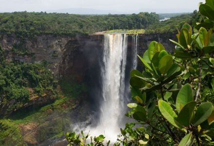 Top Things to Do in Guyana