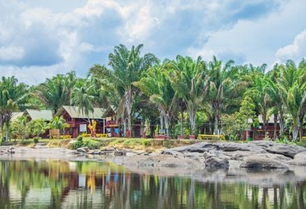 Reasons Why You Should Book a Trip to Suriname